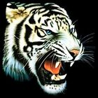 White Tiger # 2 Ladies Womens Tank Top Pick Your Size