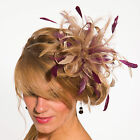 Taupe Nude Fascinator hat & burgundy wine highlight/choose any colour