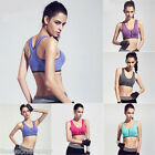 Running Gym Women's Seamless Zipper Sport Bra Padded Vest Crop Tops Push Up Yoga