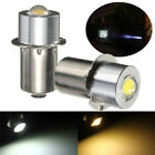Wonderful P13.5S PR2 1W Warm/White Led FlashLight Bulb High Brightness Lamps