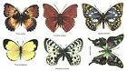 6 Butterfly Butterflies Select-A-Size Waterslide Ceramic Decals Bx image