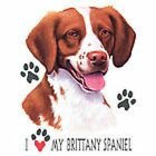 Brittany Spaniel Love T Shirt Pick Your Size 7 X Large to 14X Large