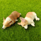Sleeping Corgi Dog Fairy Garden Dollhouse Figurine Shelf Decor Fridge Magnet Toy