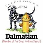 Dalmatian Funny T Shirt 7 X Large to 14 X Large Pick Your Size