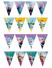 FLAG BANNER Licensed Disney FROZEN Ranges (Party/Birthday/Decoration/Bunting)