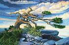 Northcott Artisan Spirit Dreamscapes by Ira Kennedy Cotton Quilt Fabric