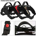 Large Dog Harness Soft Adjustable Dog Harness Vest Collar Walk Out Hand Strap