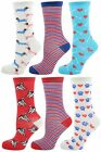 Zest Ladies 6 Pack of Assorted Design Socks