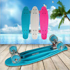 USMini Skateboard Fish Plated Cruiser Complete Deck PU Glowing Wheel Long Board