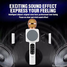 Widely Compatible Microphone Wireless Karaoke Private Home Speaker Player