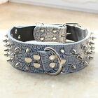 Spiked&Studded Dog Collar Pitbull Terrier Grey Leather Large Dog Collar S M L XL