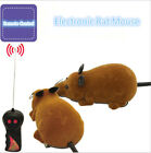 Wireless Remote Control RC Electronic Rat Mouse Mice Toy for Cat Puppy Gift 1set