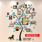 Family Hope Tree of Life 3D Wall  Art Acrylic Decals Photo Frame Wall Sticker
