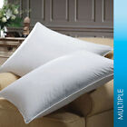 Downlite 600 Fill Power Premium White Goose Down Luxury Pillow By Downlite - TWO