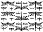 "Dragonfly Dragonflies 2-1/2"" Black or White  5"" X 7"" Card Fused Glass Decals image"