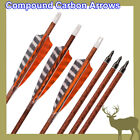 "Archery Wood Carbon Arrows 30"" Compound Bow Shooting Targets Hunting Outdoor HN"