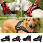 Strong Nylon Harness Reflective Adjustable Training Dog Vest Pet Puppy S-XXL US
