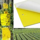 Double-sided Sticky Board Fly Insects Mosquito Killer Pest Control Trap Catchers