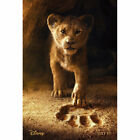 The Lion King: Mufasa, Simba Textless Movie  Posters Home Wall Decor