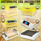 Automatic Electronic Hatcher Chicken Hen Bird Poultry Digital Semi Egg Incubator