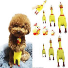 Screaming Rubber Yellow Chicken Pet Dog Puppy Toy Squeak Squeaker 3 Sizes New