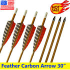 SP600 Carbon Arrows Turkey Feather - Archery Bows Target Hunting Shooting 30inch