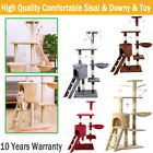 Cat Scratch Tree Activity Centre Scratching Post & Toys Bed Cat Nip Claws Sisal