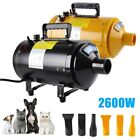 Secador de Pelo Perros Animales Pet Dog Dryer Piscina