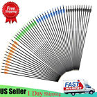 28/30/32 Inch Carbon Arrow Spine 500 W/ Replaceable Tip for Compound/Recurve Bow