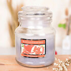 22oz Chriatmas Gift Wax Scented Candle Glass Jar Fragrance Aromatic Home
