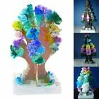 Growing Paper Tree Toy Boys Girls Novelty Xmas Gift Christmas For Child