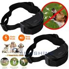 LOT Electric Vibration Shock Dog Pet Anti Bark Training Remote Collar No Barking