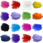 "20PCS 10""-12""Ostrich Feathers approx Wedding Party Decorations 25cm-30cm"