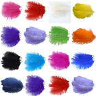 "30PCS 10""-12""Ostrich Feathers approx Wedding Party Decorations 25cm-30cm"