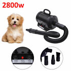 2800W Dog Pet Grooming Hair Dryer Hairdryer Heater Blaster 3 Colours