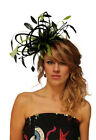 NEW Black & Lime Green Fascinator Hat Choose any colour satin & feathers wedding