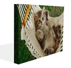 Fantasy Canvas Print Wall Art Premium Woman and Cat Purple Eyes Picture Framed