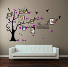 Family Tree Bird Photo Frame Wall Stickers Quote Art Wall Decals Home Decoration