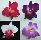 12 PCS Large Artificial Silk Orchid Flower Heads Wholesale Craft Pick Color
