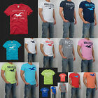 NWT HOLLISTER By Abercrombi​e Men Dixon Lake Classic Tamarack T Shirt Tee