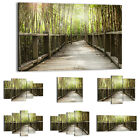 47 Shapes Canvas Picture Print Wall Art Landscape Sun rays Forest trees 2456 E