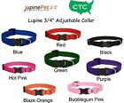 "Lupine DOG COLLAR 3/4"" with ""Even If Chewed"" Guarantee"