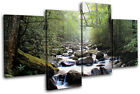 Forest Stream ECO Landscapes MULTI CANVAS WALL ART Picture Print VA