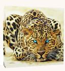 Large Big Cat Leopard Wild  Canvas Wall Art Premium Quality Print Ready To Hang