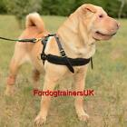 Shar Pei Harness for Pulling&Tracking | Dog Leather Harness for Sharpei for Sale
