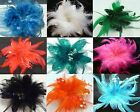 Small Feather Mesh & Sequin Flower Hair Clip and Brooch Pin Fascinator
