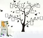 Large Family Photo Frame Tree Wall Sticker Removable Kids Home Decor Room Decals