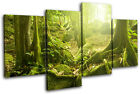 Mystical Forest Trees Landscapes MULTI CANVAS WALL ART Picture Print VA