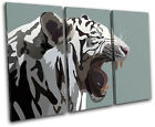 White Tiger Animals TREBLE CANVAS WALL ART Picture Print VA