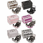 Cosmetic Organizer Makeup Train Case w/ Mirror 3 trays M101 Silver Zebra Black